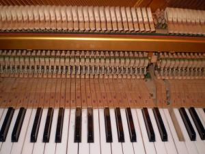 La mécanique d'un piano : les touches, marteaux et cordes sont ce qui produit le son, lui-même amplifié par la table d'harmonie